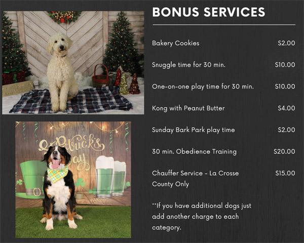 Dog Boarding Bonus Services