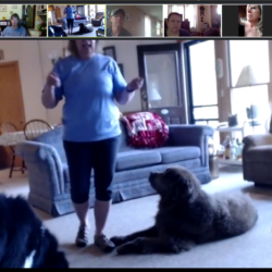What does Virtual Dog Class look like?